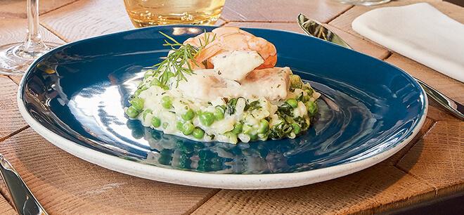 Assiette porcelain rocaleo marine Arcoroc solution bistronomie