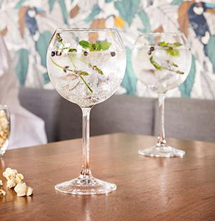 verre à pied vina gin tonic